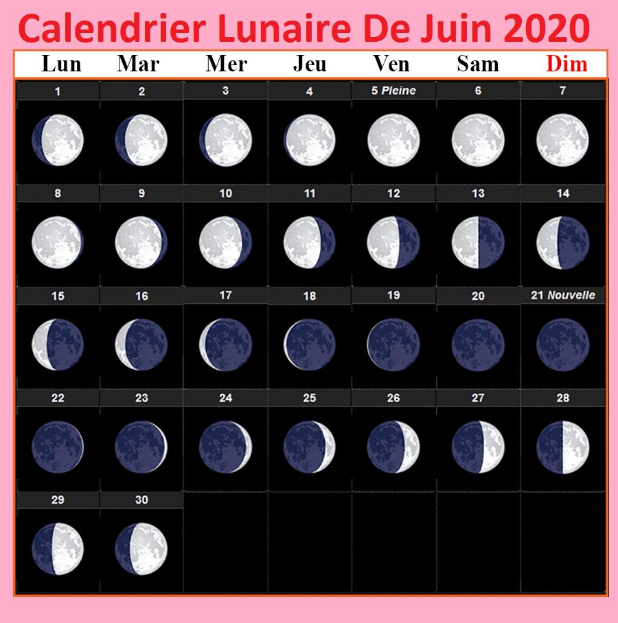 Calendrier lunaire Juin 2020 Jardinage