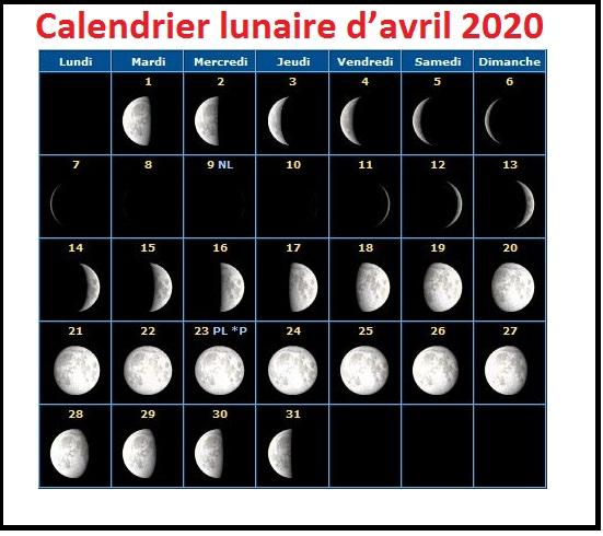 Calendrier Lunaire D'Avril 2020 Graines Et Plantes