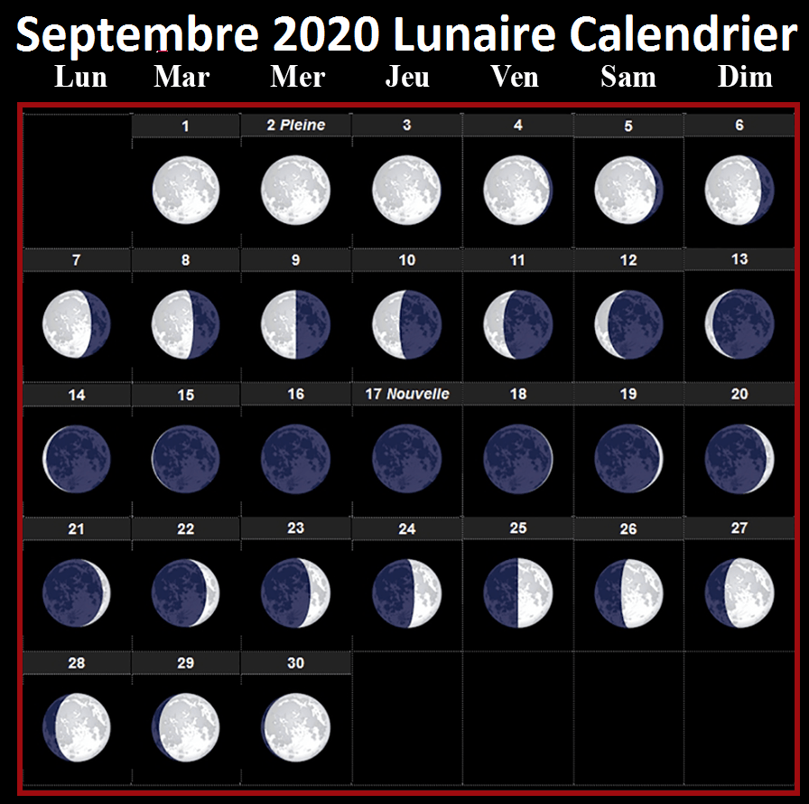 Lunar calendar September 2020 Vegetable garden